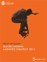 skateboarding amenities strategy