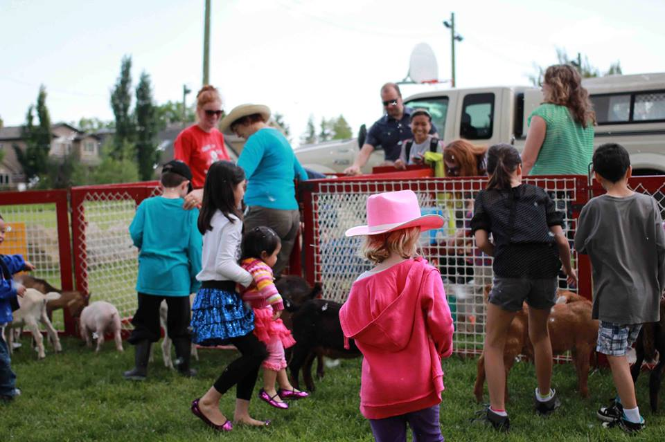Stampede Party 2013 petting zoo